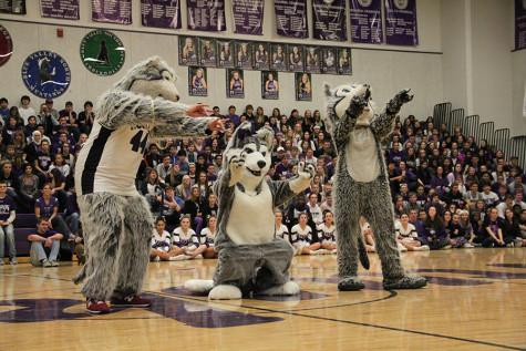 Four school mascots announced