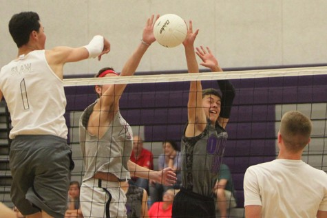 Volleyball tournament held in honor of Kim Gibney