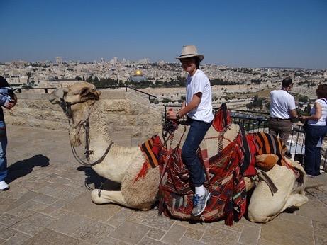 9_camel